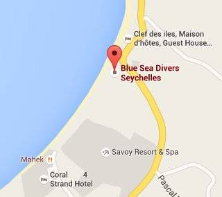 Blue Sea Divers - FFESSM - CEDIP courses - 4 days (level 1)